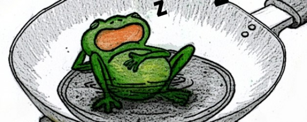The Big D = DENIAL and The Boiled Frog Analogy