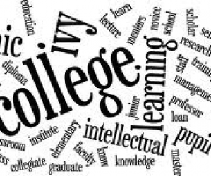 Does Your College Major Matter?