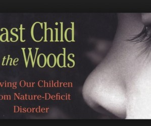 NDD:  Nature Deficit Disorder