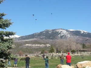 Flying Kites(1)